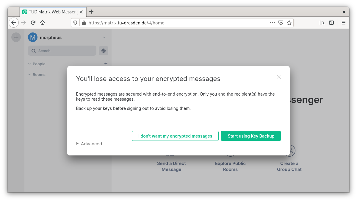 Query if messages should be encrypted